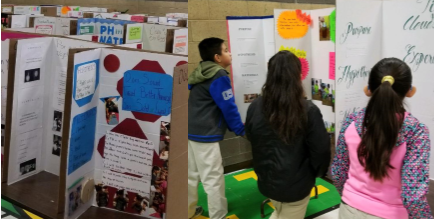 Science Fair - An opportunity to show what you know!