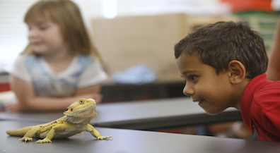 EPISD's Traveling Zoo helps students learn