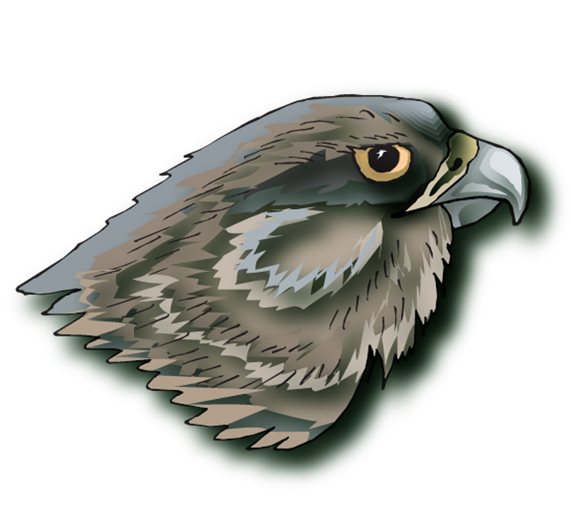 green elementary    homepage